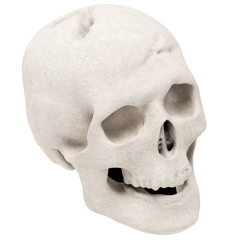 Human Skull Gas Log for Indoor or Outdoor Fireplaces Fire Pits Halloween Decor - White