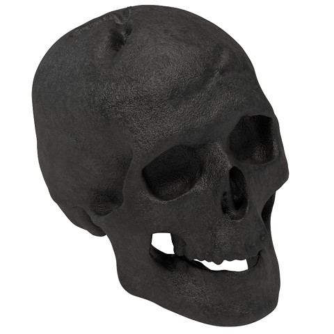 Human Skull Gas Log for Indoor or Outdoor Fireplaces Fire Pits Halloween Decor - Black